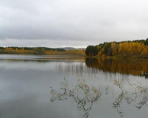 Долгое озеро (Челябинская область)