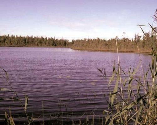 Абаткуль озеро