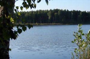 Аргаяш озеро