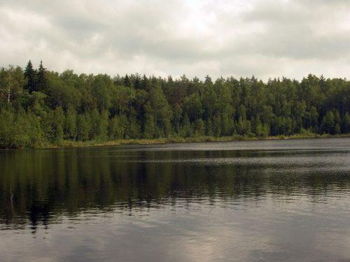 Баженовка озеро