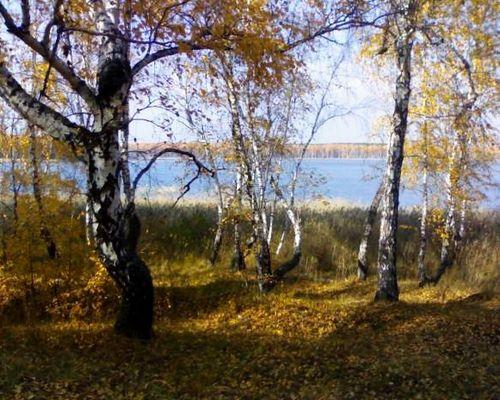 Горькое озеро (Челябинская область)
