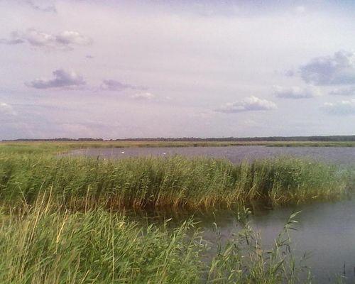 Грязное озеро (Челябинская область)