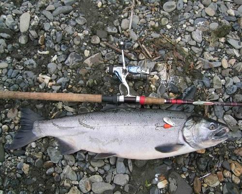 Камчатцы смогли посоревноваться в ловле рыбы