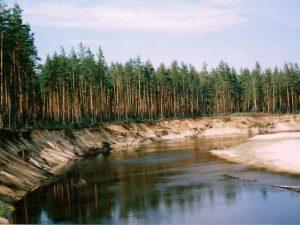 Маньшинка