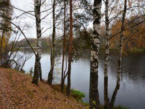 Новоталицкое водохранилище