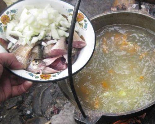 Рыбный суп из хариуса и ленка