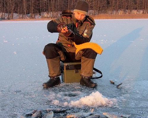 Удильники для ловли зимнего леща