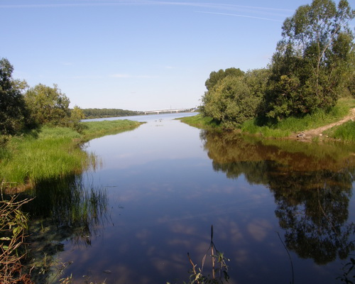 Велья (Новгородская область, Ленинградская область)