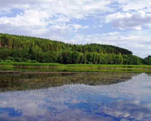 Верхний Уфалейский пруд