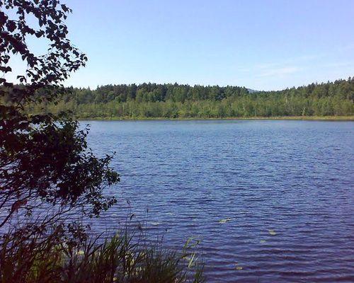Жупино озеро
