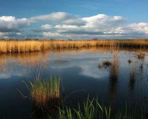 Большой Сарыкуль озеро