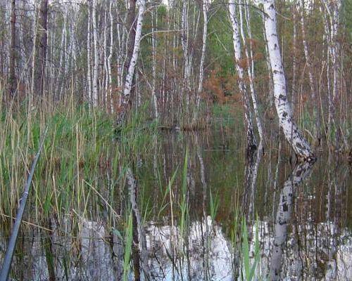 Каракульмак озеро