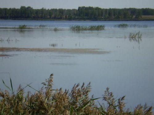 Пятково озеро