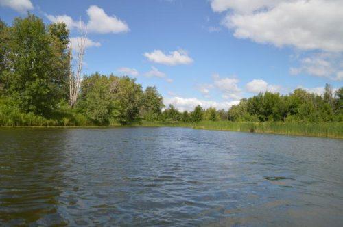 Садок озеро