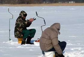 Ловля жереха на отвесную блесну зимой