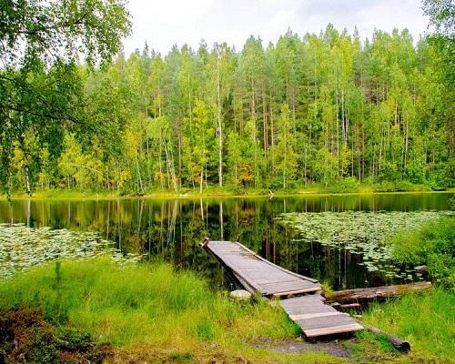 Где ловить рыбу в Ленинградской области