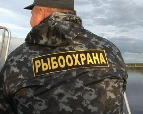 Инспекторы рыбоохраны, лесоохраны и охотнадзора могут получить перекрестные полномочия
