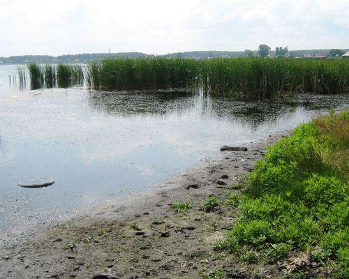 Ишалино озеро