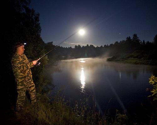 Ночная ловля на спиннинг - МИР УЛОВА