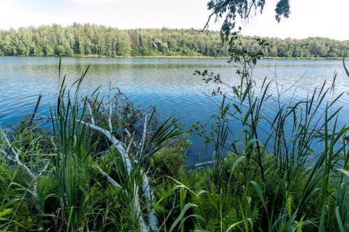 Карабалык озеро