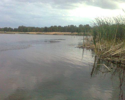 Карсы пруд