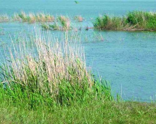 Картабыз озеро