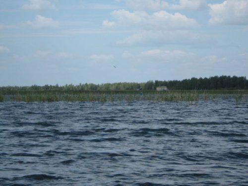 Большой Лапташ озеро