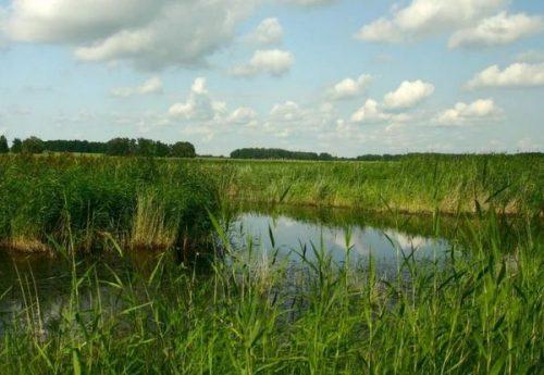 Малое Травяное озеро
