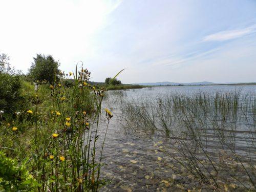Малые Касли озеро