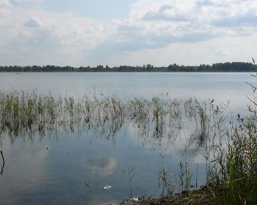 Могильное озеро (Челябинская область)
