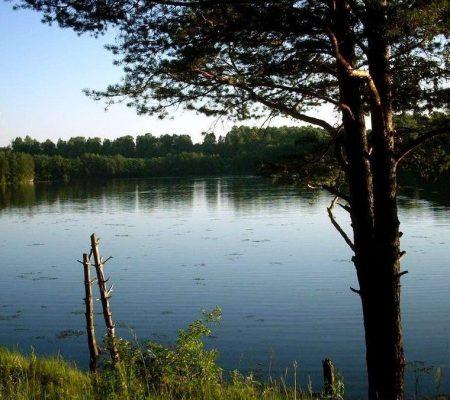 Никольский пруд