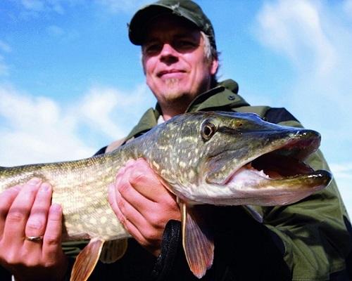 Рыбалка в Карелии в августе: Какую рыбу и где ловить в августе в Карелии