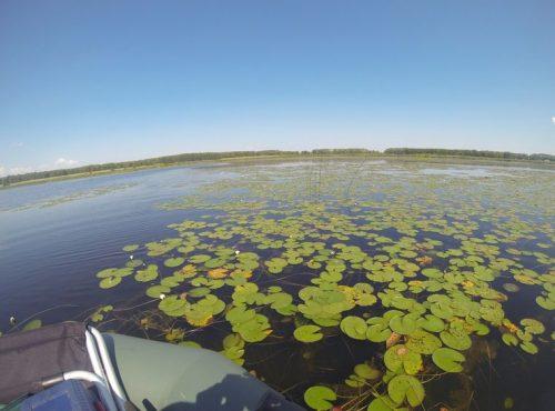 Большие Сагаусты озеро