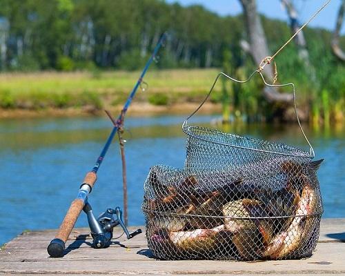 Соревнования по рыбной ловле прошли на Кишемском канале