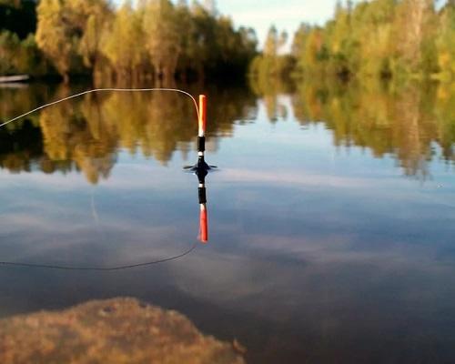 Удочки для начинающих рыбаков
