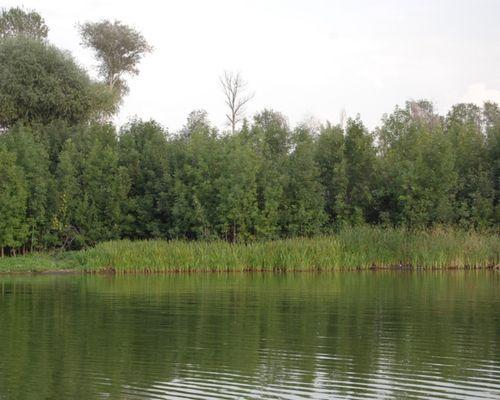 Чиганы озеро