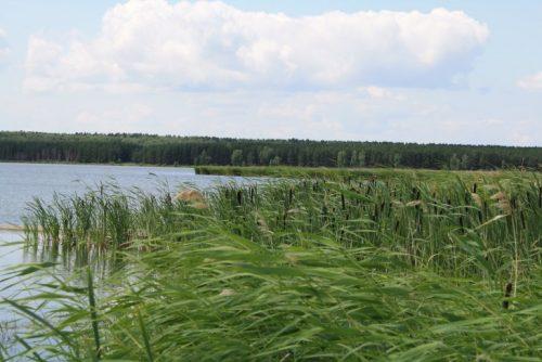 Хохловатое озеро
