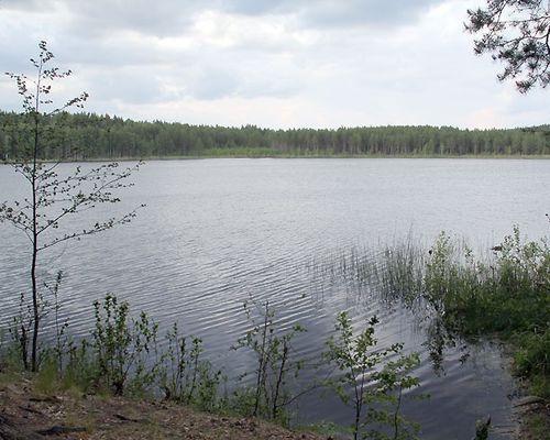 Щучье озеро (Челябинская область)