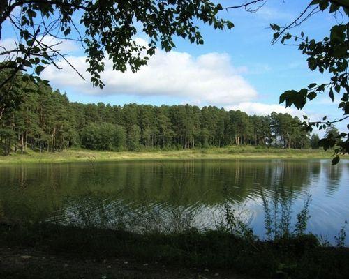 Шишкино озеро
