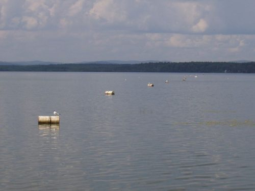 Тирикуль озеро