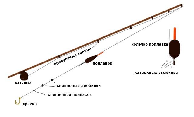 Поплавочная ловля карпа: все нюансы и особенности