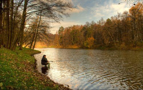 Ловля плотвы осенью