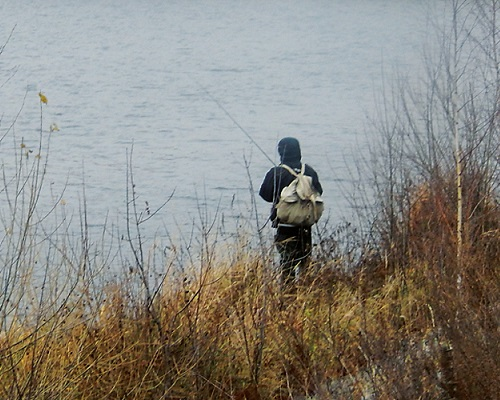 Ловля плотвы в ноябре