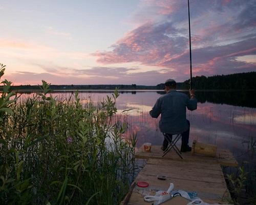 Ловля плотвы летом