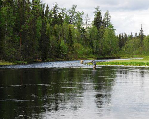 Рыбалка на семгу на реке Мегра
