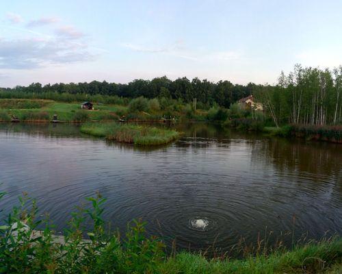 Рыбалка в Вашутино