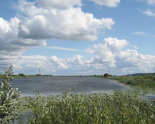 Борковское озеро