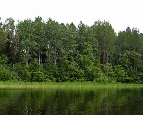 Дунаговское озеро