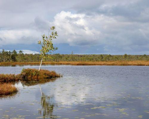 Филилеевское озеро