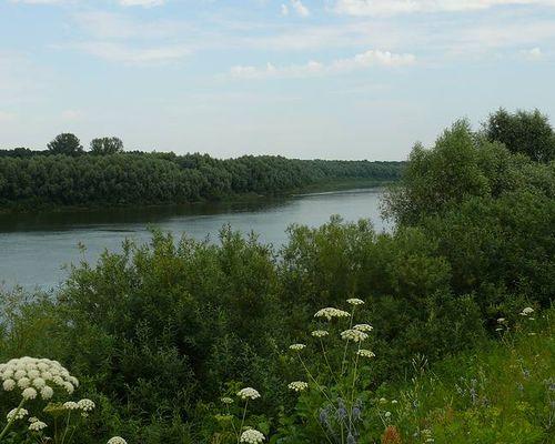 Истья (Рязанская область)